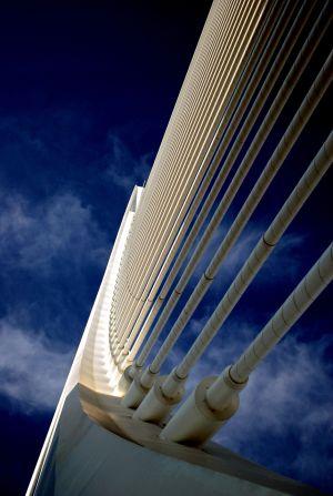 Puente Agora Ciudad Artes y Ciencias Valencia